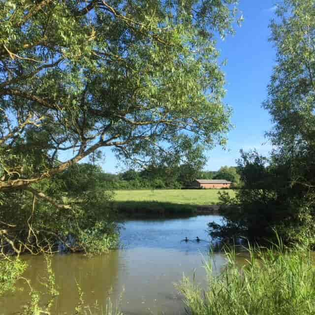 Island Pond, Gabriels Farm Camping and Carvanning Site in Kent
